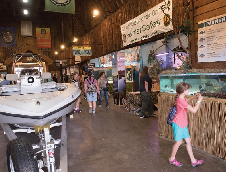 Florida Fish and Wild Life Display