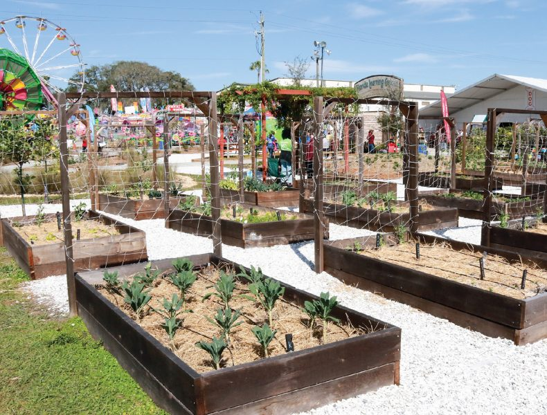 Florida Learning Garden Planters